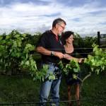 Macquariedale, Biodynamic Vineyard, Hunter Valley