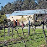 Tintilla Estate on Hermitage Road, Hunter Valley