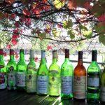 Hunter Valley Old Fine Wine