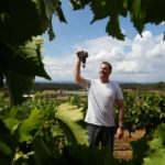 Hunter Valley harvest starts early in 2018