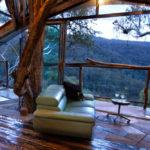 The 5 Best Winter Cabns near Sydney, Hunter Valley
